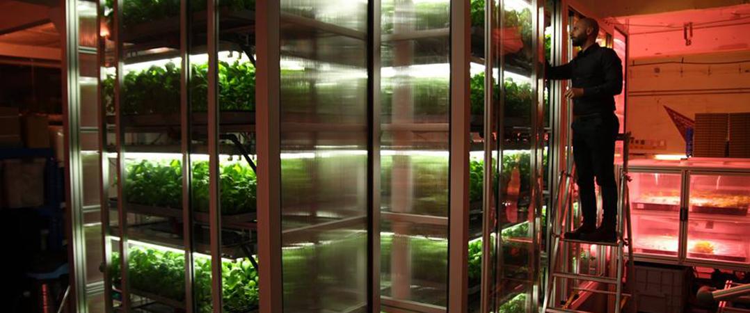 Infarm: 22M€ para expandir hortas verticais urbanas