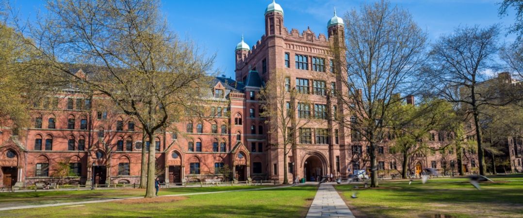 Universidade de Yale entra no mercado das criptomoedas