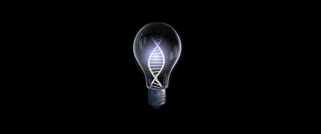 Como incluir a inovação no ADN da sua empresa