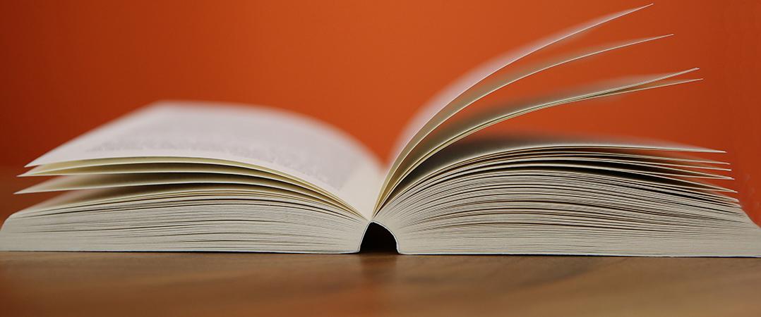 Sugestão de leitura: 10 livros de liderança para empreendedores com menos de 30 anos