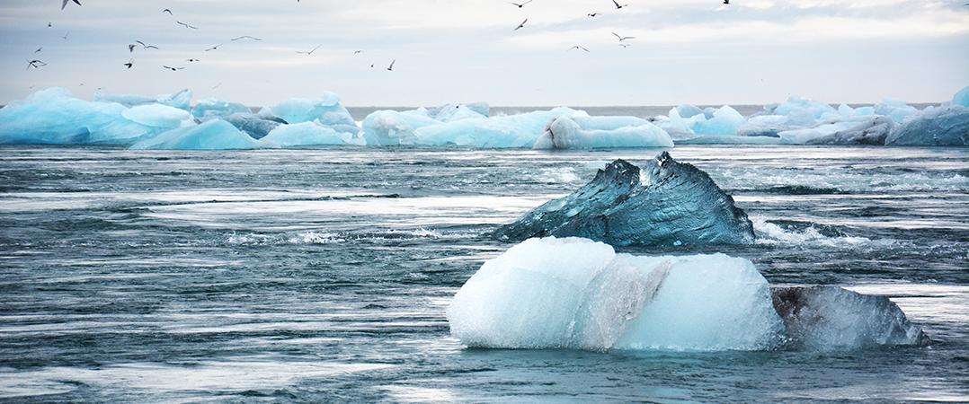 9 start-ups que querem combater as alterações climáticas
