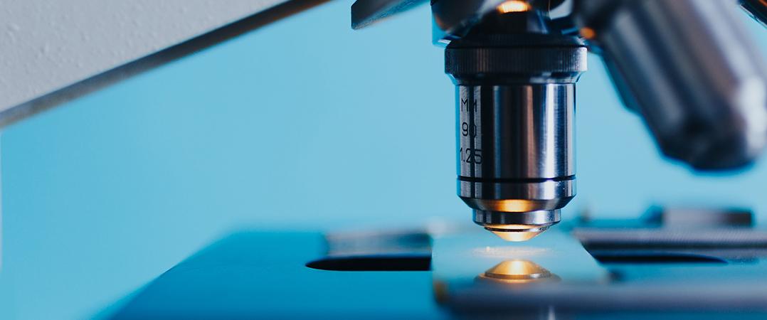 First Discoveries Forum promove concurso de ideias na área da medicina regenerativa