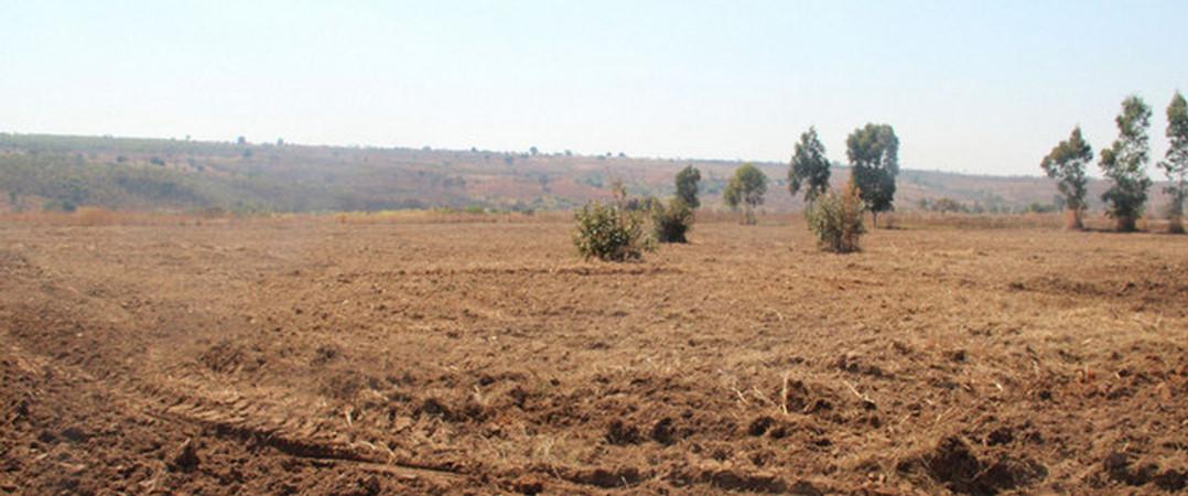 Atenção investidores. Angolano vende terrenos para projeto agrícola ou turístico