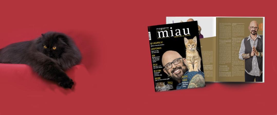 Revista Miau Magazine procura investidor para novos projetos