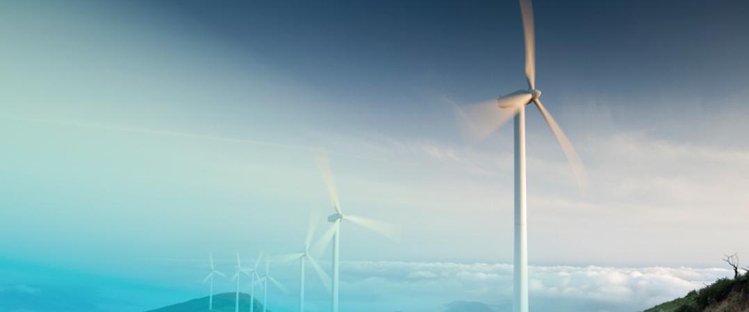 Investidores europeus estão mais atentos à sustentabilidade